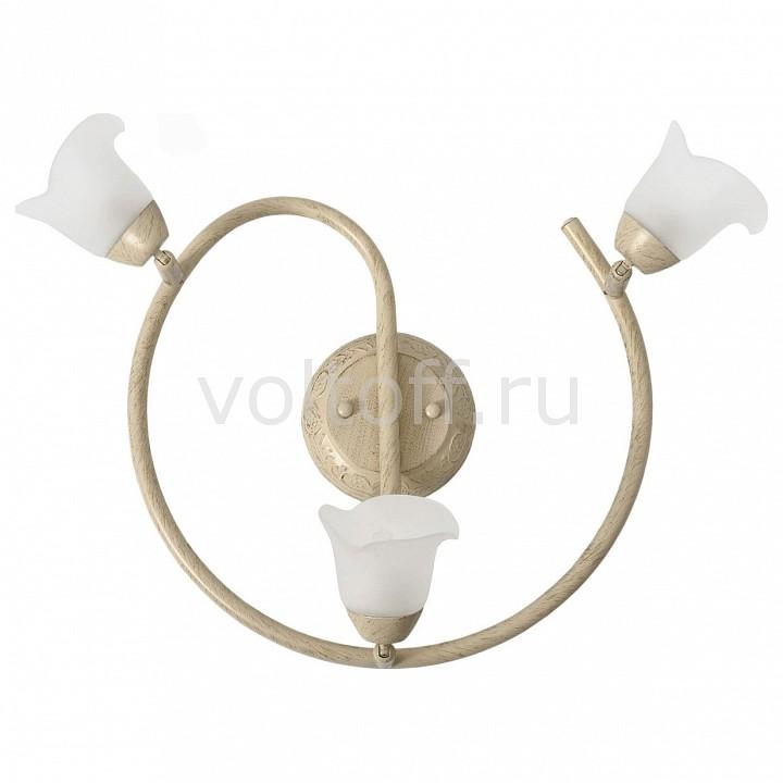 Спот MW-LightС тремя лампами<br>Артикул - MW_512020603,Серия - Адель<br>