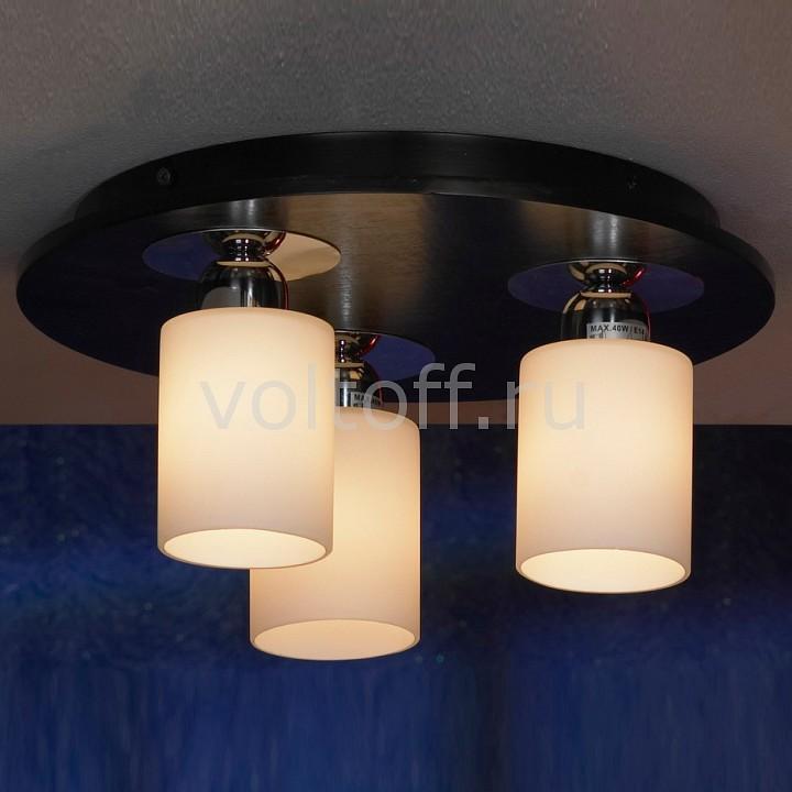 Накладной светильник LussoleПотолочные светильники модерн<br>Артикул - LSF-6107-03,Серия - Caprile<br>