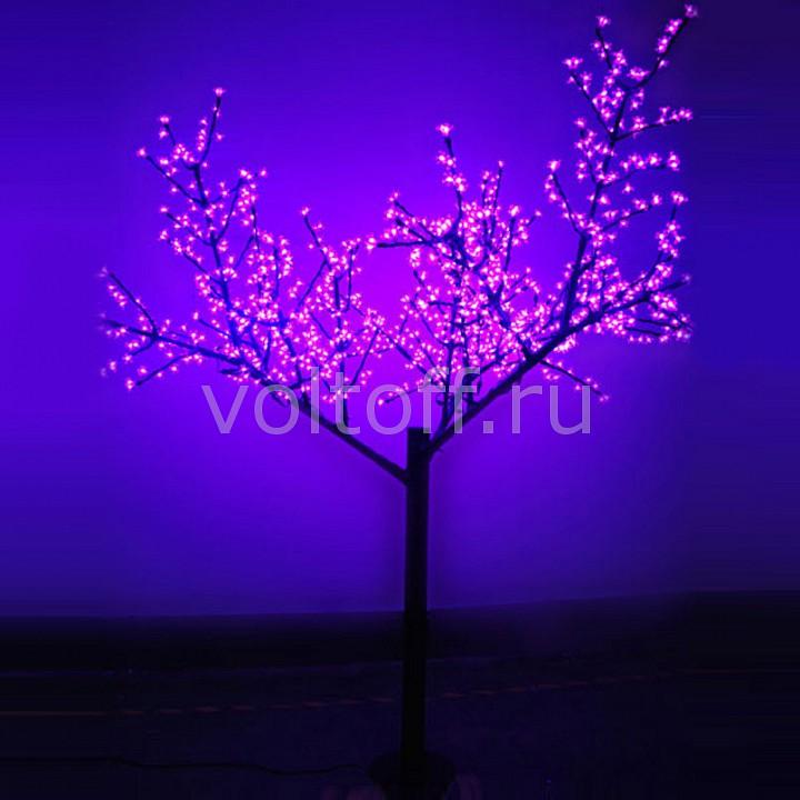 Сакура световая RichLED от Voltoff