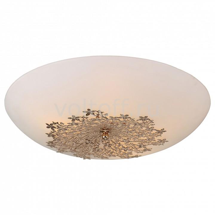 Накладной светильник Arte LampНакладные<br>Артикул - AR_A4548PL-5GO,Серия - Provence<br>