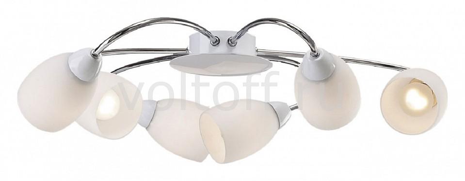 Потолочная люстра FavouriteПотолочные светильники модерн<br>Артикул - FV_1042-6U,Серия - Blanca<br>