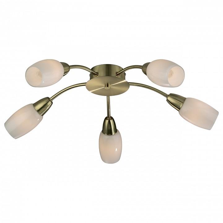 Потолочная люстра Odeon LightПотолочные светильники модерн<br>Артикул - OD_2067_5C,Серия - Otta<br>