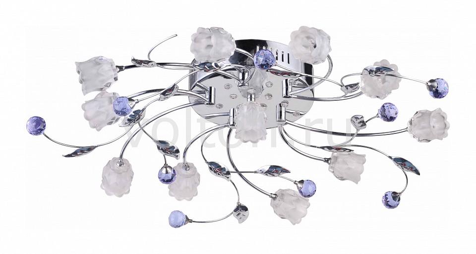 Потолочная люстра Lumier 5848 S5848-11