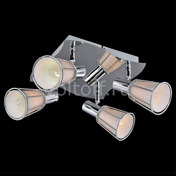 Спот EurosvetПотолочные светильники модерн<br>Артикул - EV_6426,Серия - 20079<br>