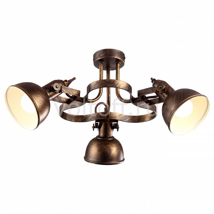 Спот Arte LampМеталлические светильники<br>Артикул - AR_A5216PL-3BR,Серия - Martin<br>