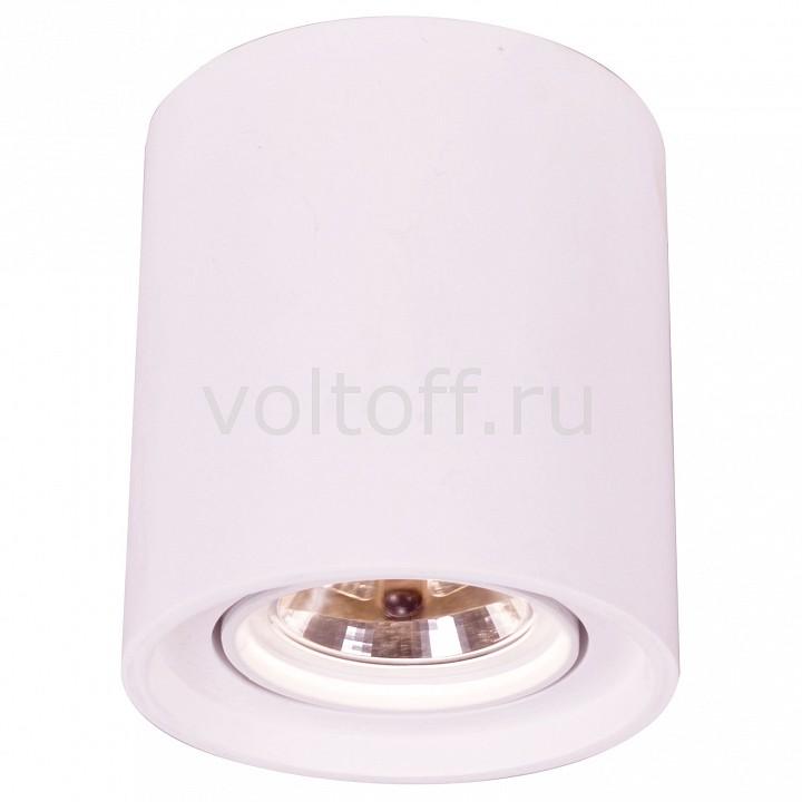 Накладной светильник Arte LampПотолочные светильники модерн<br>Артикул - AR_A9262PL-1WH,Серия - Tubo<br>