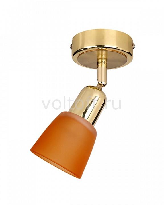 Спот Luce SolaraПотолочные светильники модерн<br>Артикул - LC_5046_1PA_Gold_Orange,Серия - 5046<br>