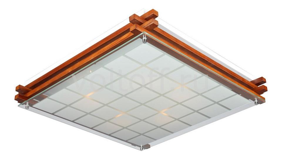 Накладной светильник OmniluxПотолочные светильники модерн<br>Артикул - OM_OML-40527-05,Серия - OML-405<br>