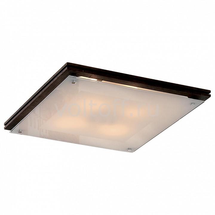 Накладной светильник CitiluxПотолочные светильники модерн<br>Артикул - CL938541,Серия - 938<br>