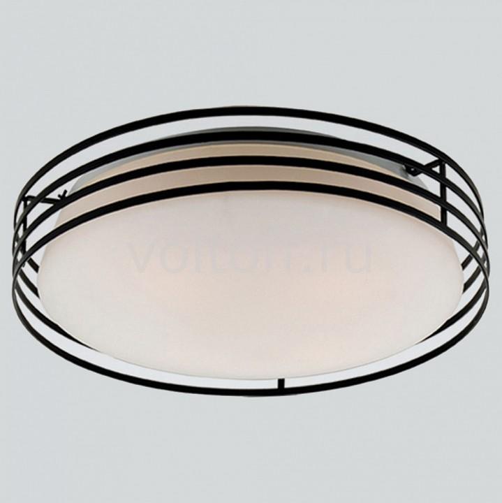 Накладной светильник FavouriteПотолочные светильники модерн<br>Артикул - FV_1516-3C,Серия - Moon<br>