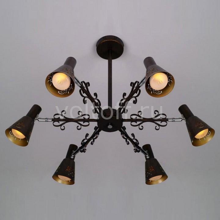 Светильник на штанге CitiluxМеталлические светильники<br>Артикул - CL529161,Серия - Дункан<br>
