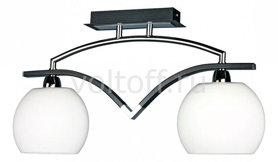 Светильник на штанге OmniluxПотолочные светильники модерн<br>Артикул - OM_OML-26927-02,Серия - OM-269<br>