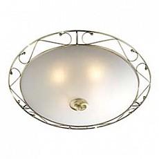 Накладной светильник Istra 4252