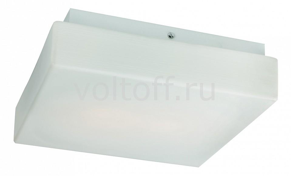 Накладной светильник ST-LuceПотолочные светильники модерн<br>Артикул - SL503.502.02,Серия - Bango<br>