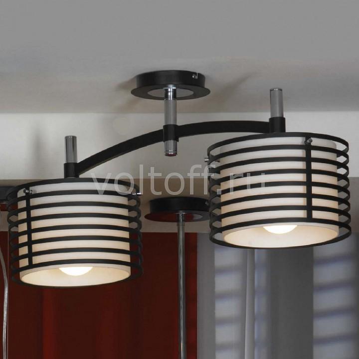 Светильник на штанге LussoleПотолочные светильники модерн<br>Артикул - LSF-8203-02,Серия - Busachi<br>