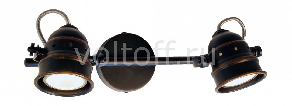 Спот CitiluxМеталлические светильники<br>Артикул - CL537521,Серия - Веймар<br>