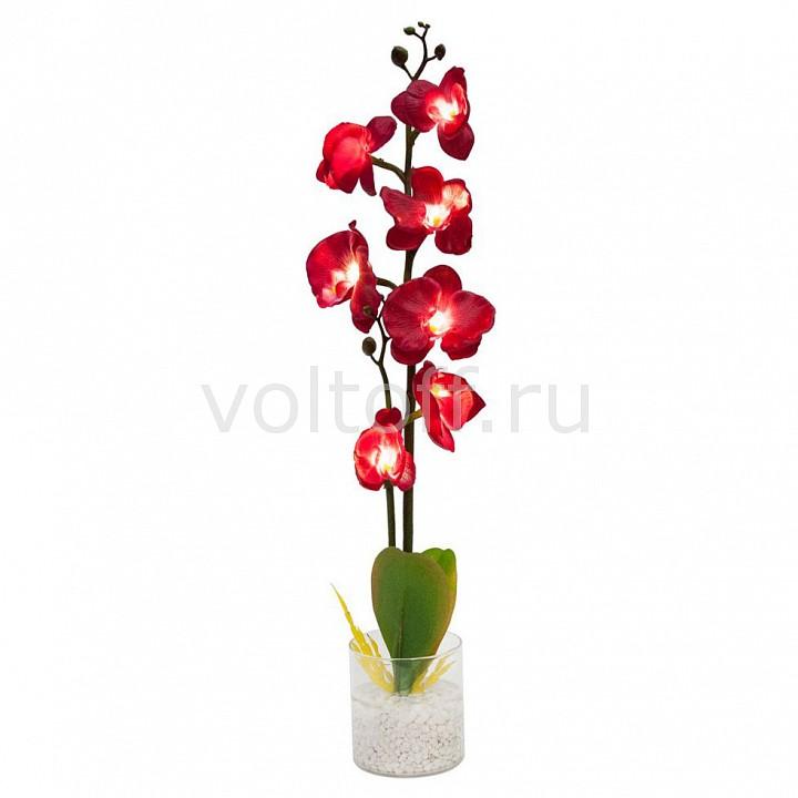 Растение в горшке Feron