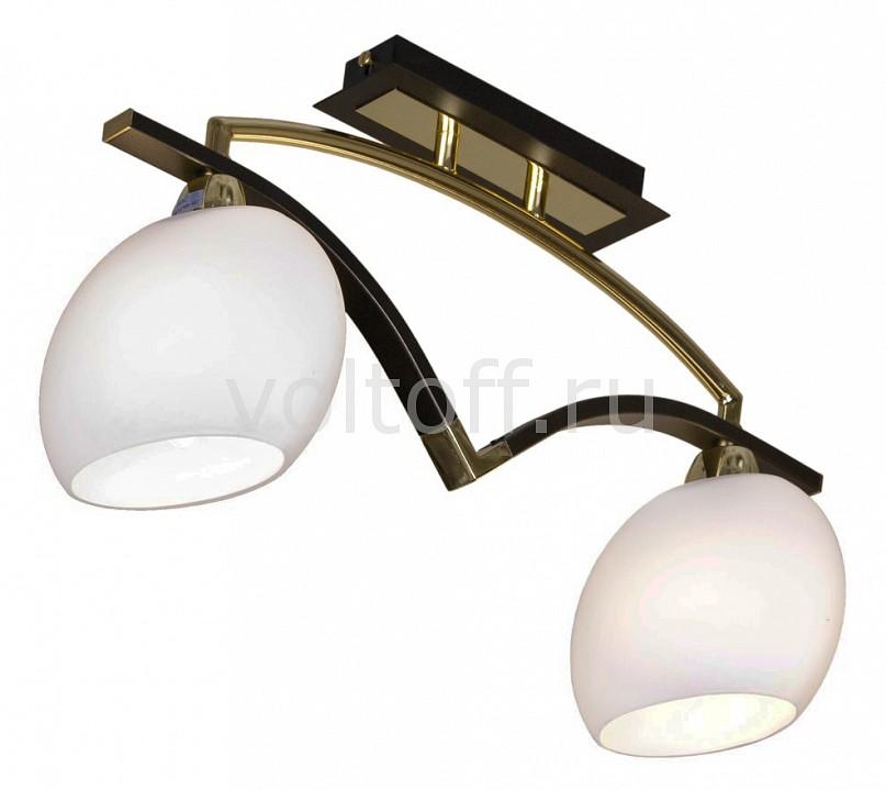 Накладной светильник Velante