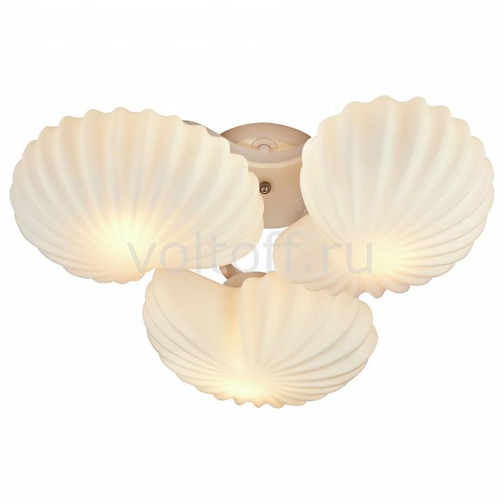 Потолочная люстра ST-LuceПотолочные светильники модерн<br>Артикул - SL534.502.03,Серия - Conglia<br>