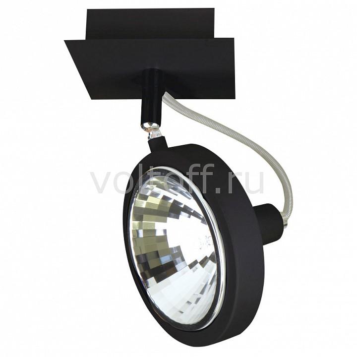 Светильник на штанге LightstarСветильники для общественных помещений<br>Артикул - LS_210317,Серия - Varieta 9<br>