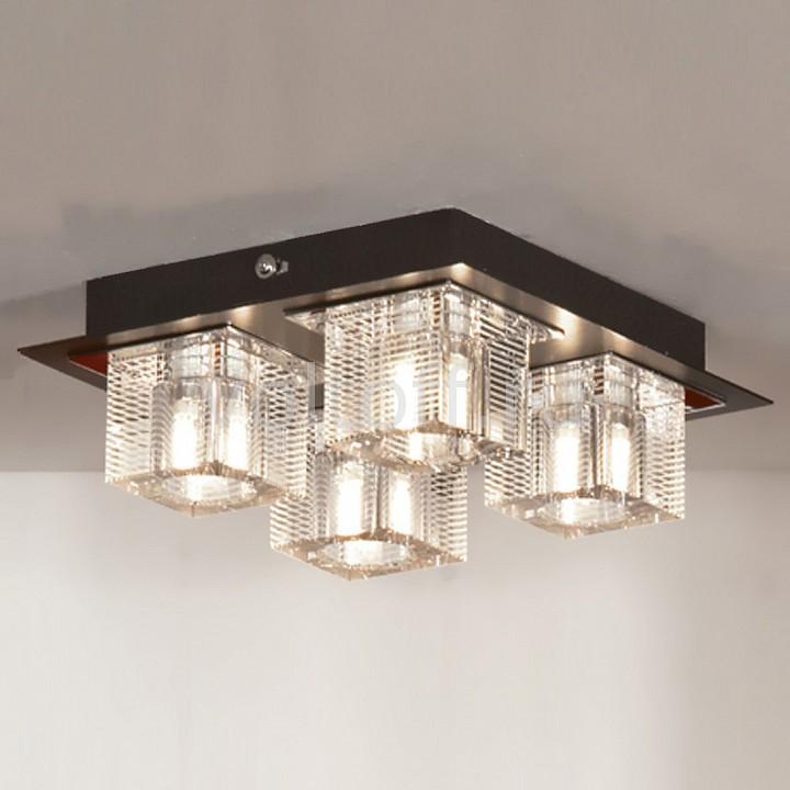 Накладной светильник LussoleЭлитные светильники<br>Артикул - LSF-1307-04,Серия - Notte-di-Luna<br>
