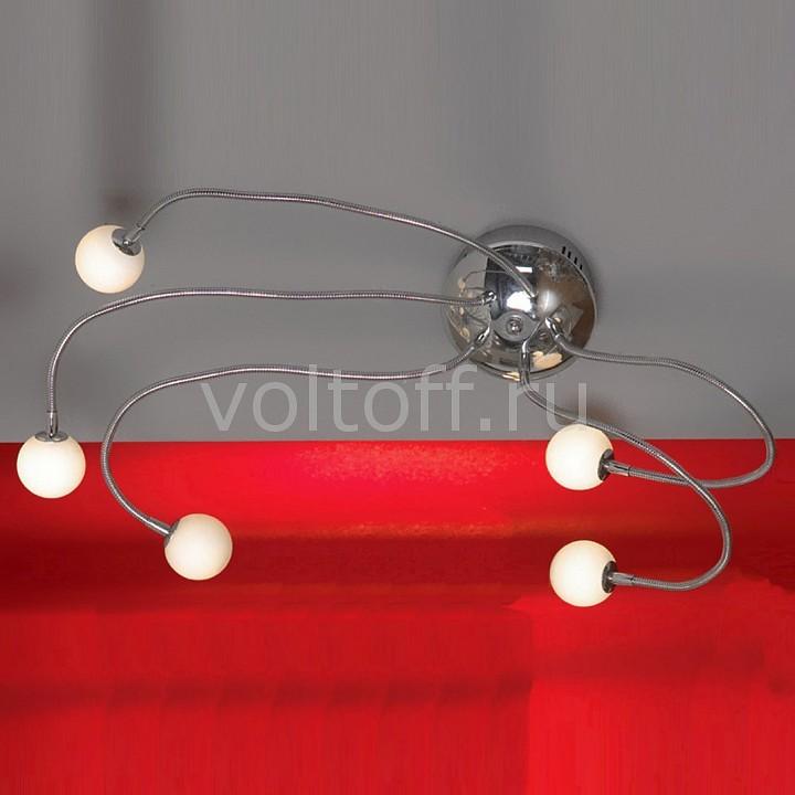 Накладной светильник Octopus LSC-7201-05Потолочные светильники модерн<br>Артикул - LSC-7201-05,Серия - Octopus<br>