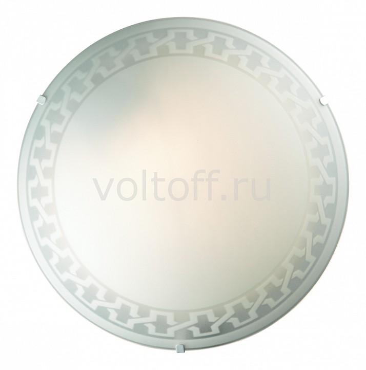 Накладной светильник Vassa 1203/M