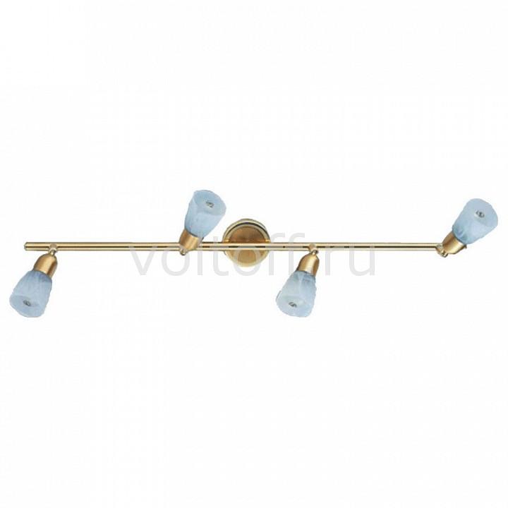 Спот De MarktПотолочные светильники модерн<br>Артикул - MW_504021004,Серия - Мона<br>