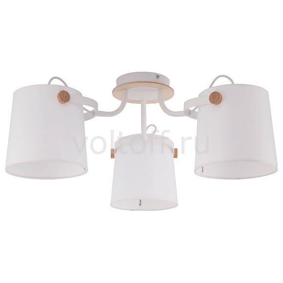Потолочная люстра EurosvetПотолочные светильники модерн<br>Артикул - EV_76263,Серия - Click<br>