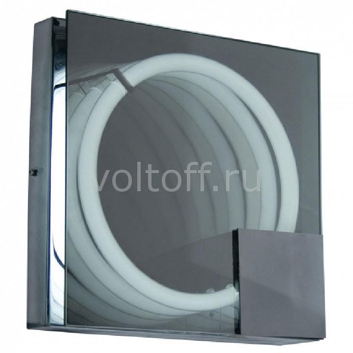 Накладной светильник MW-LightСветильники модерн<br>Артикул - MW_276022501,Серия - Венеция 5<br>