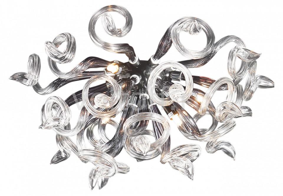 Накладной светильник LightstarГалогеновые настенные светильники<br>Артикул - LS_890659,Серия - Medusa<br>