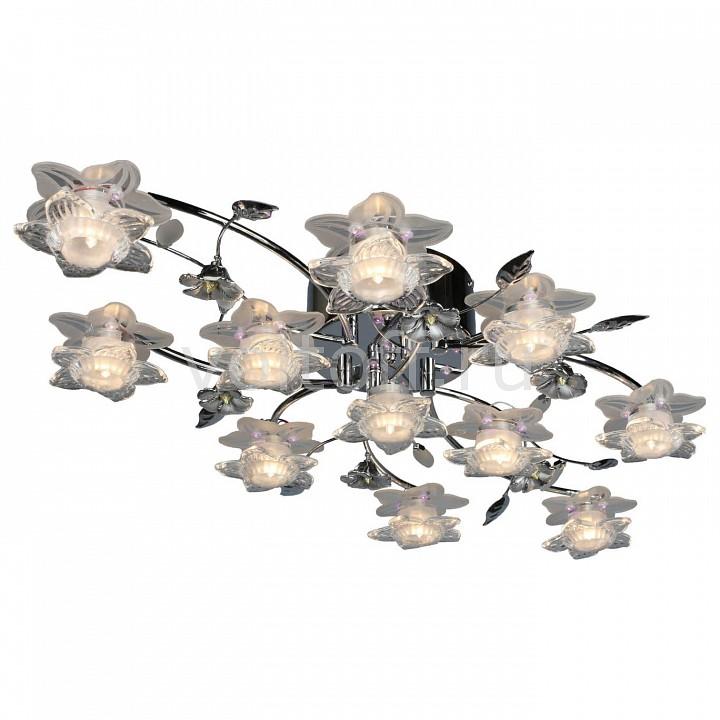 Купить Освещение для дома Потолочная люстра OML-144 OML-14407-11  Потолочная люстра OML-144 OML-14407-11