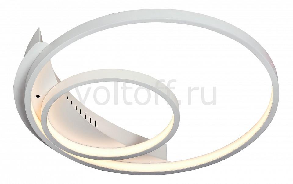 Накладной светильник ST-LuceМеталлические светильники<br>Артикул - SL858.502.02,Серия - 858<br>