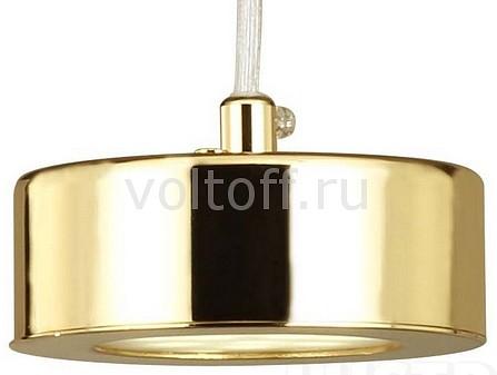 Подвесной светильник Lustige 1723-1P Favourite
