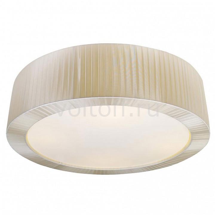 Накладной светильник Trommel 1059-5C - это надежный выбор. Рекомендуем приобрести продукцию производителя Favourite - это удобно и цена доступная.