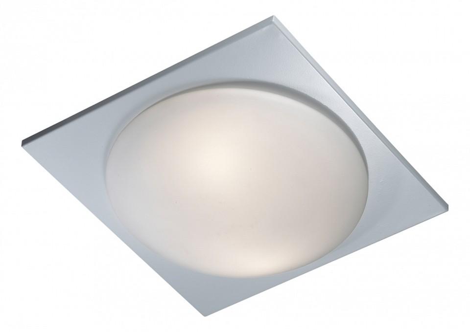 Накладной светильник Odeon LightПотолочные светильники модерн<br>Артикул - OD_2762_2C,Серия - Brido<br>