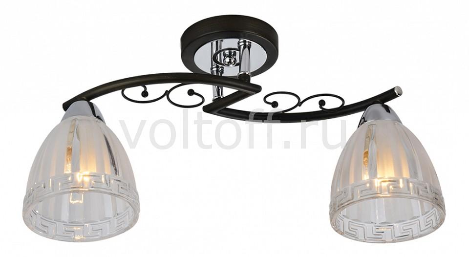 Купить Освещение для дома Светильник на штанге 232/2PF-Blackchrome  Светильник на штанге 232/2PF-Blackchrome