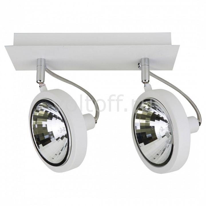 Светильник на штанге LightstarСветильники для общественных помещений<br>Артикул - LS_210326,Серия - Varieta 9<br>