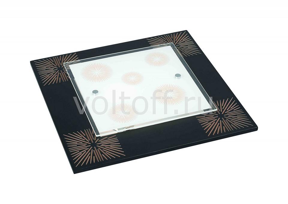 Накладной светильник Blitz Wall and ceilings 4316 4316-32