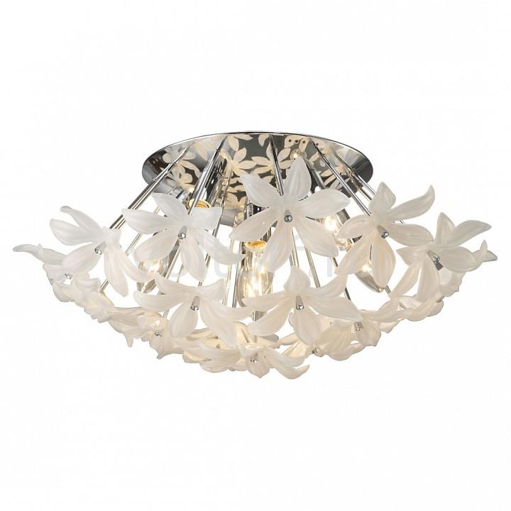 Потолочная люстра FavouriteПотолочные светильники модерн<br>Артикул - FV_1318-7U,Серия - Flowers<br>