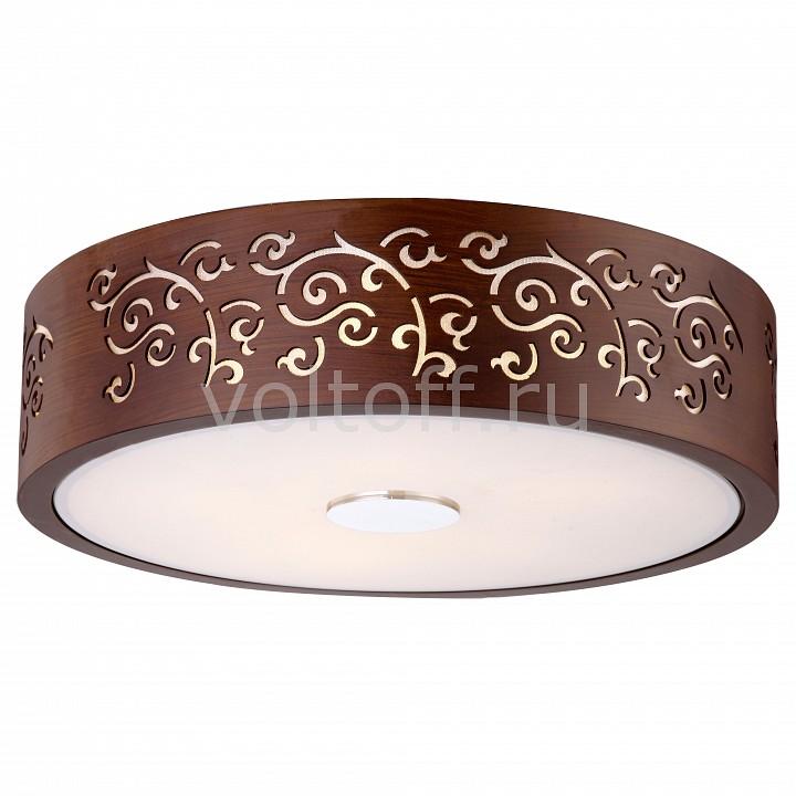 Накладной светильник Arte Lamp от Voltoff