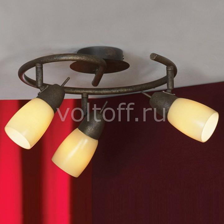 Спот LussoleПотолочные светильники модерн<br>Артикул - LSQ-6917-03,Серия - Cevedale<br>