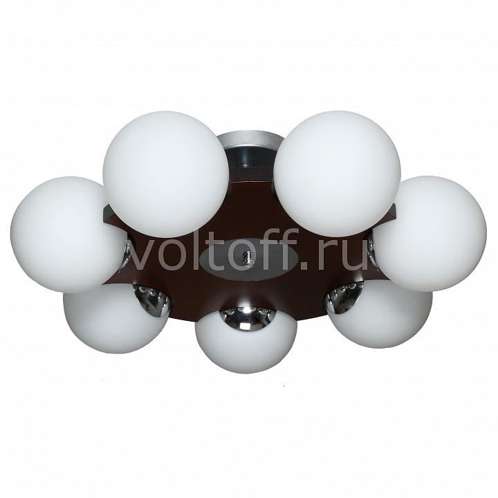 Люстра на штанге АврораПотолочные светильники модерн<br>Артикул - AV_10035-7C,Серия - Буйки<br>