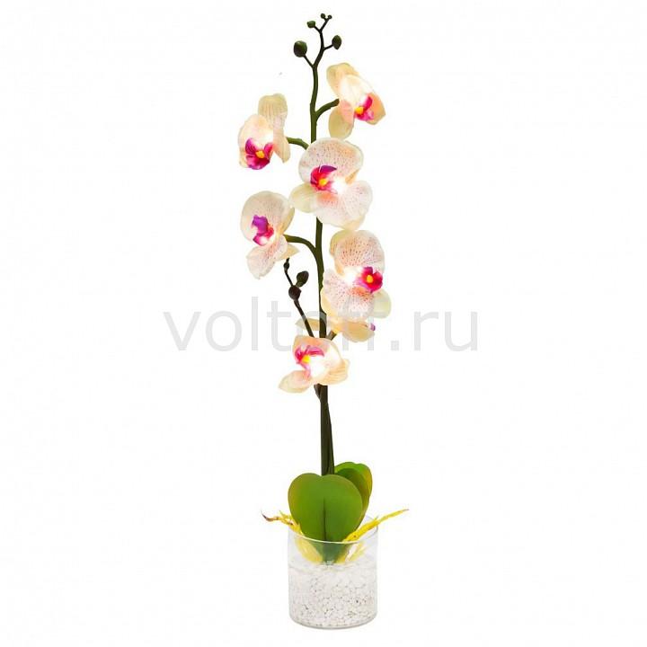Растение в горшке Feron Орхидея PL307 06261